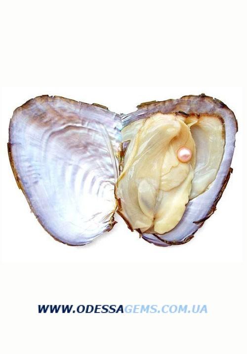 Жемчуг морской от 3 до 9 мм